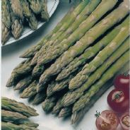 Asparagus Connover's Colossal - 25 Grams - Bulk Discounts Available